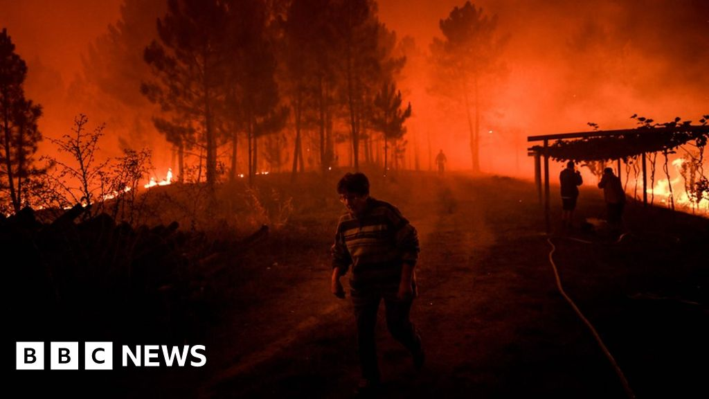 Wildfires sweep through central Portugal