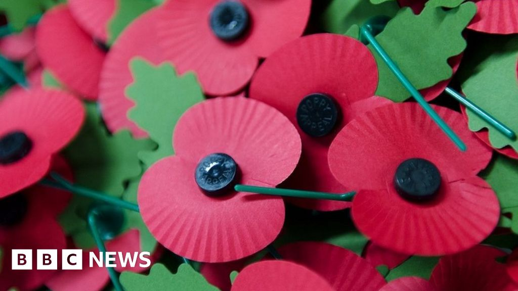Red poppy to mark civilian victims of war and  acts of terrorism