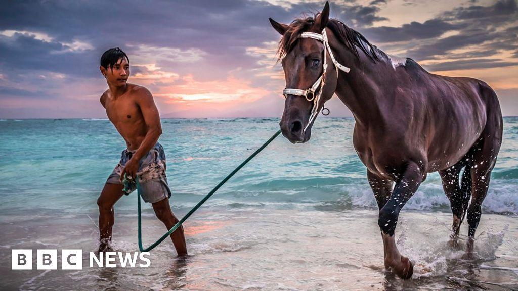 Seaside suburb inspires worldwide photo collaboration