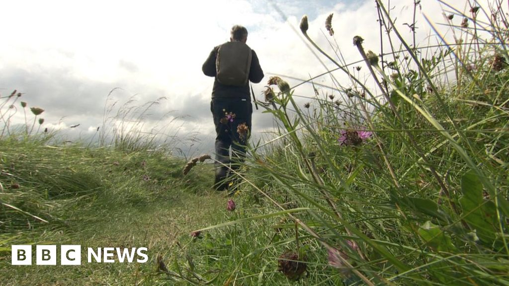 Somerset walking app brings coastal history to life thumbnail