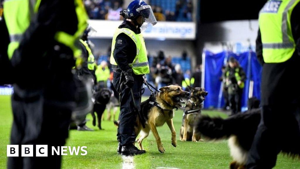 Police slam 'abhorrent' football violence thumbnail
