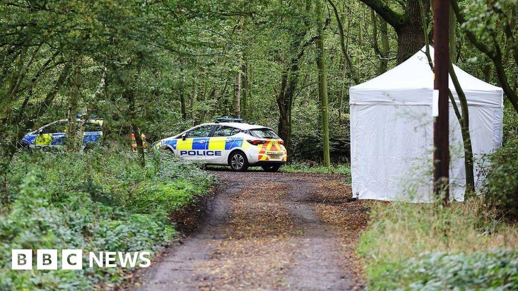 Joy Morgan murder: Woodland body confirmed as a student