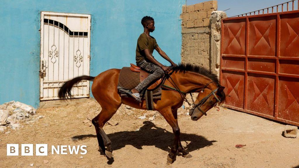 senegals-teenage-jockey-races-to-fame