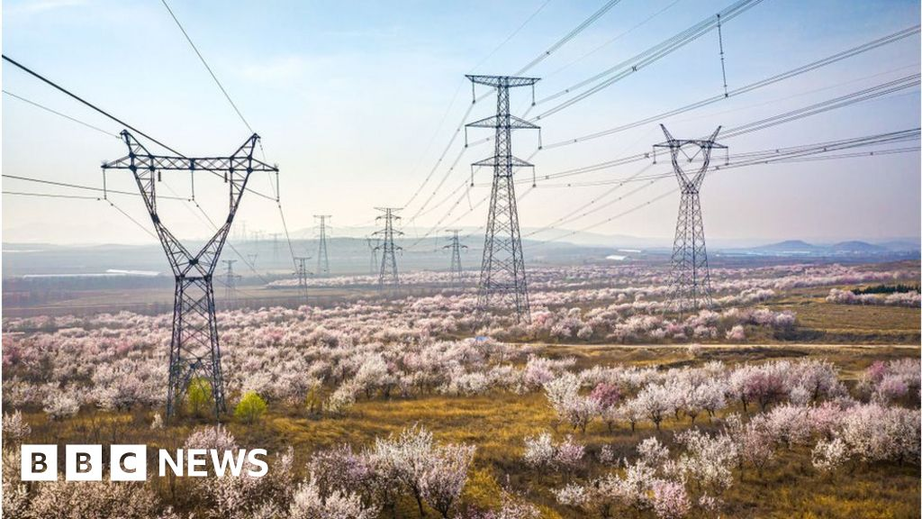 Power outages hit homes in north-east China