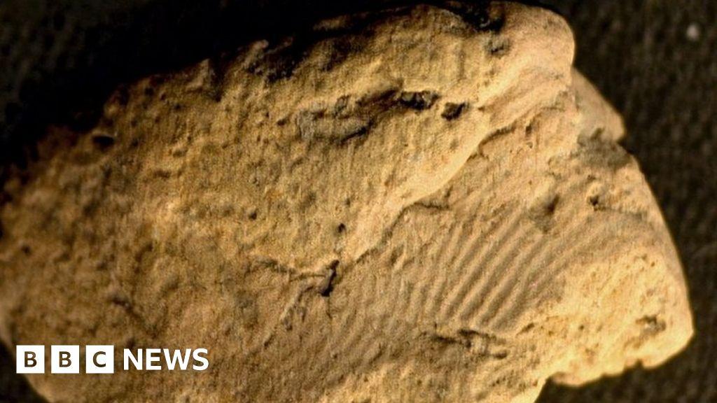 Prehistoric pottery fingerprints 'left by two men'