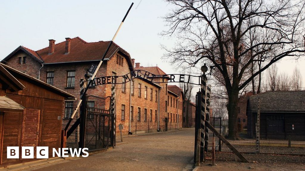 Naked Auschwitz demonstrators convicted