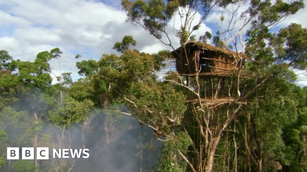 Human Planet: Tribe's treehouses not real home, says BBC