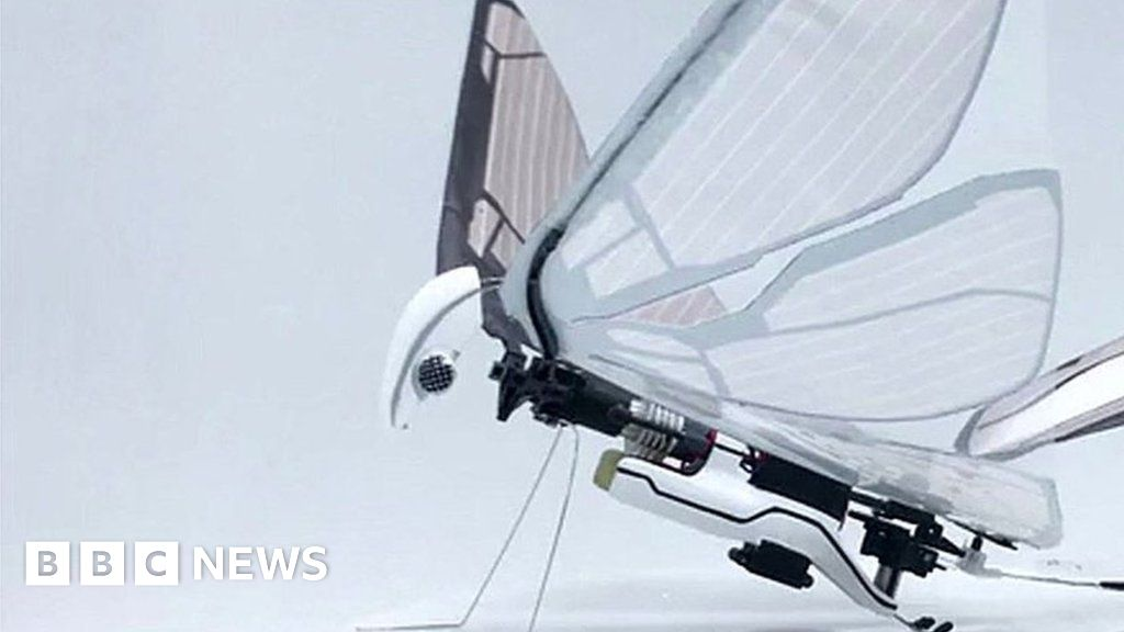 Insect Inspired Winged Drone Makes a Buzz and Other News