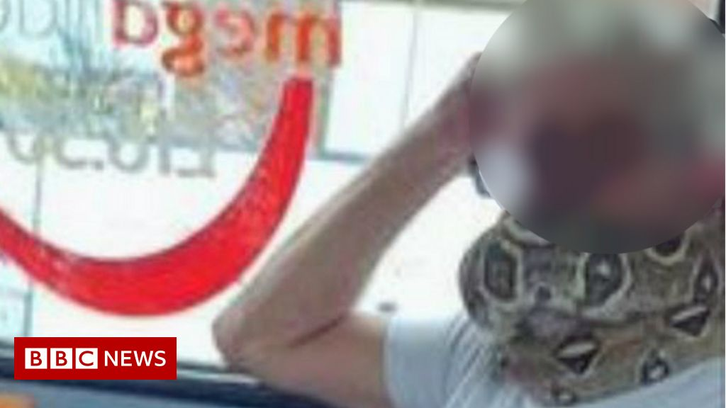 Swinton commuter uses live snake as bus face mask