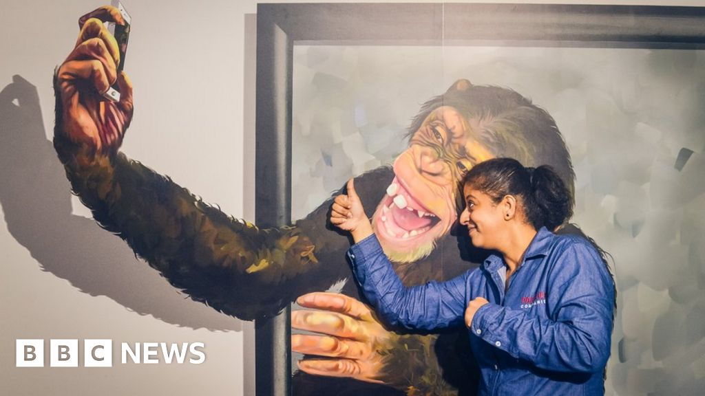 The museum in India that shrinks you - BBC News