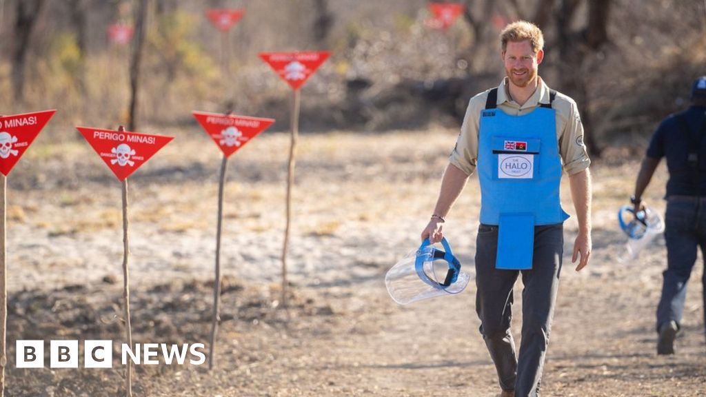 Prince Harry in southern Africa: Where are the world s landmines?