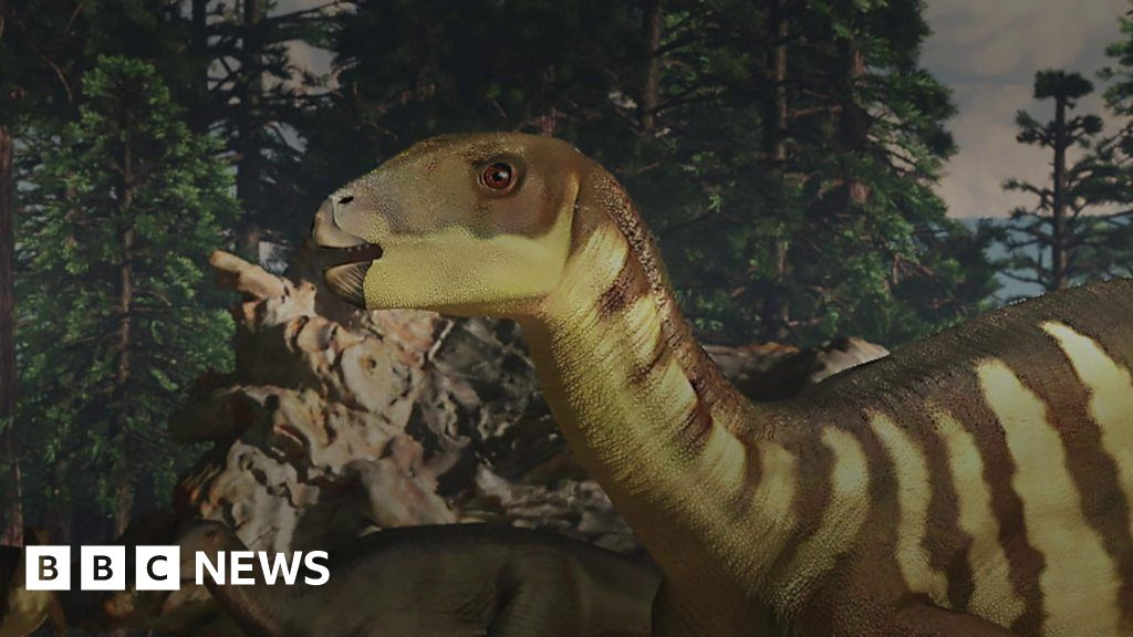 Wallaby Sized Dinosaur Discovered In Australia
