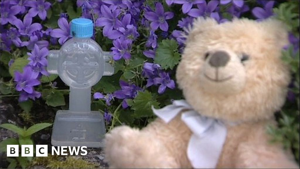 www.bbc.com: Mother and baby homes: Adoptees and survivors can access information