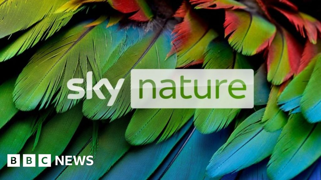Image of article 'Sky TV kicks off HDR support with nature shows'