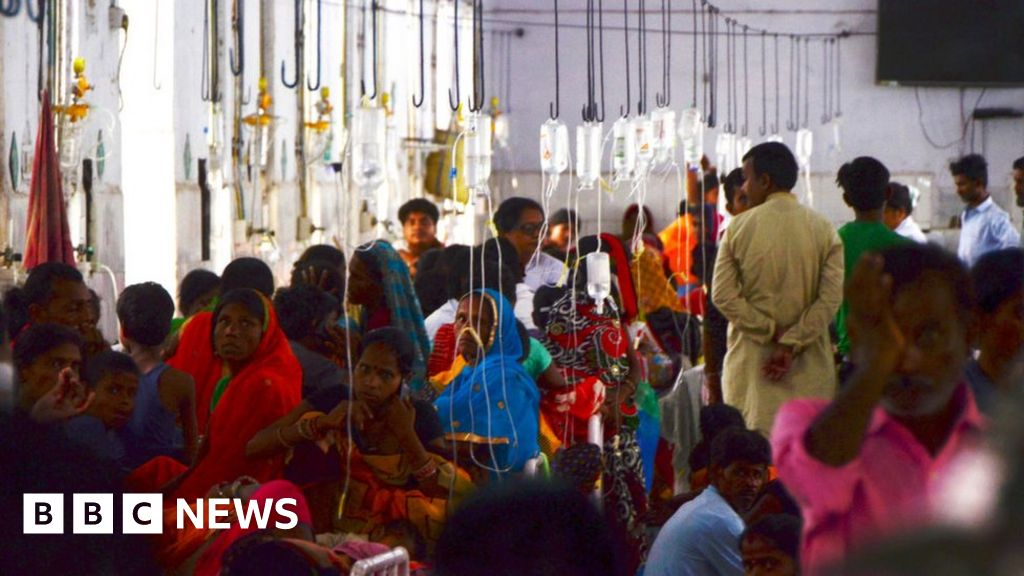 Bihar encephalitis deaths reveal cracks in India healthcare