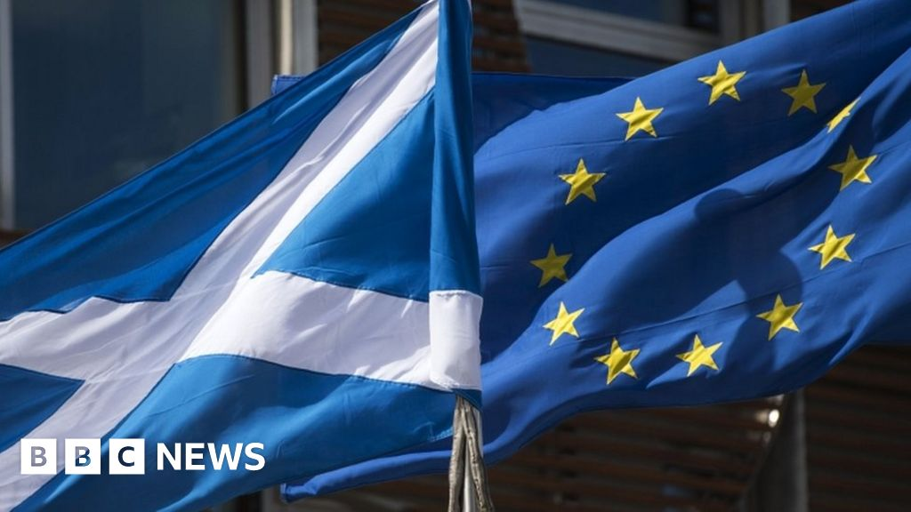 Brexit: What are Scotland's options?