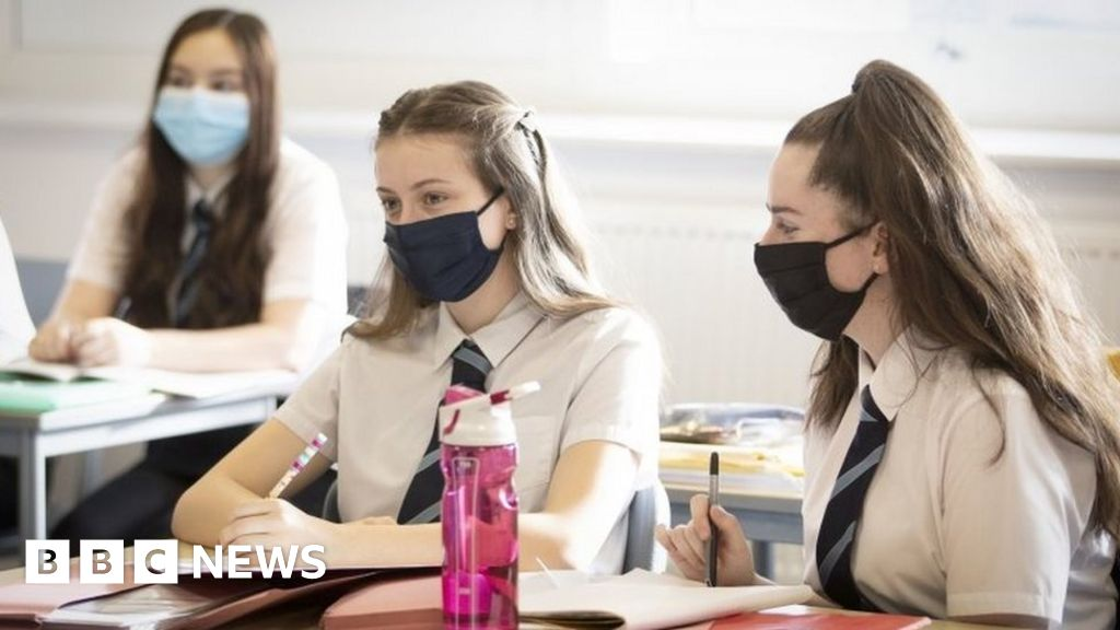 Online learning for some pupils in N. Ireland next term