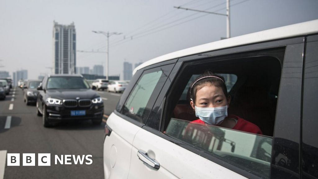 Are 'anti-virus' cars in China just a gimmick?