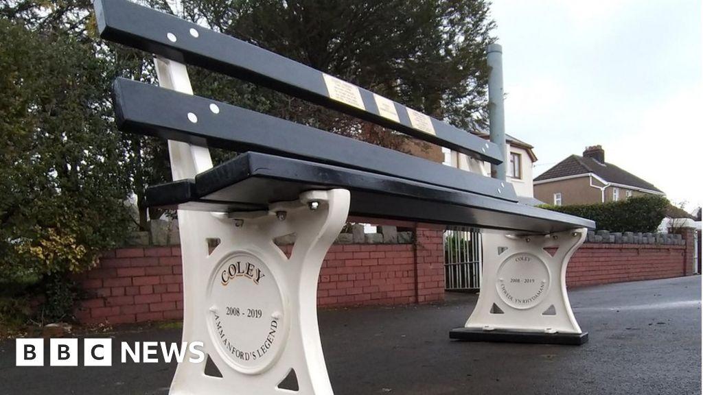 Ammanford memorial bench for town s beloved dog