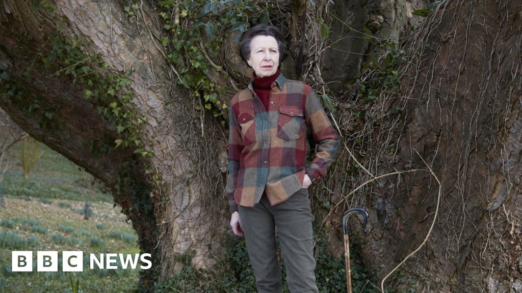 Princess Anne gets military promotion as she celebrates 70th birthday