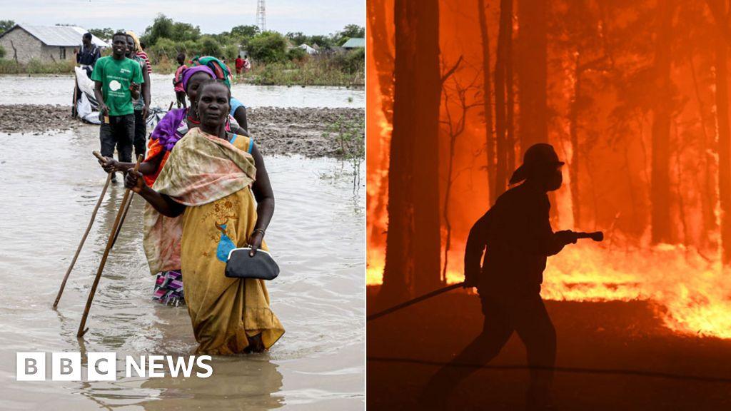 The climate phenomenon linking floods and bushfires