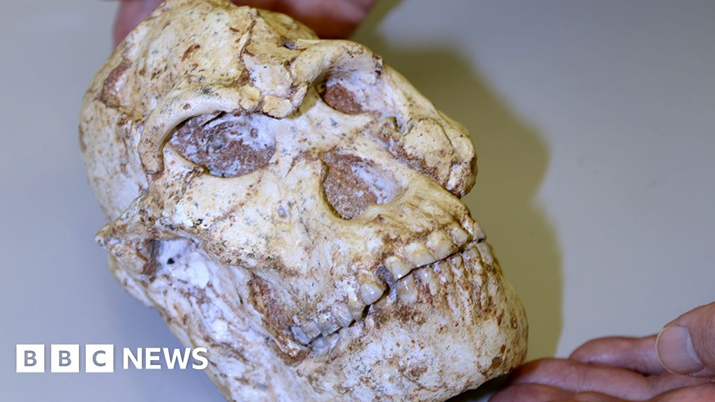 Human origins: 'Little Foot' fossil's big journey out of Africa
