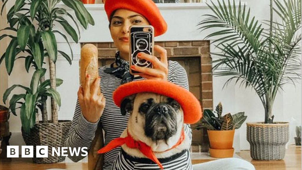 'I match clothes with my pug'