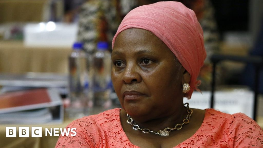 South African defence minister's pay docked over use of air force plane