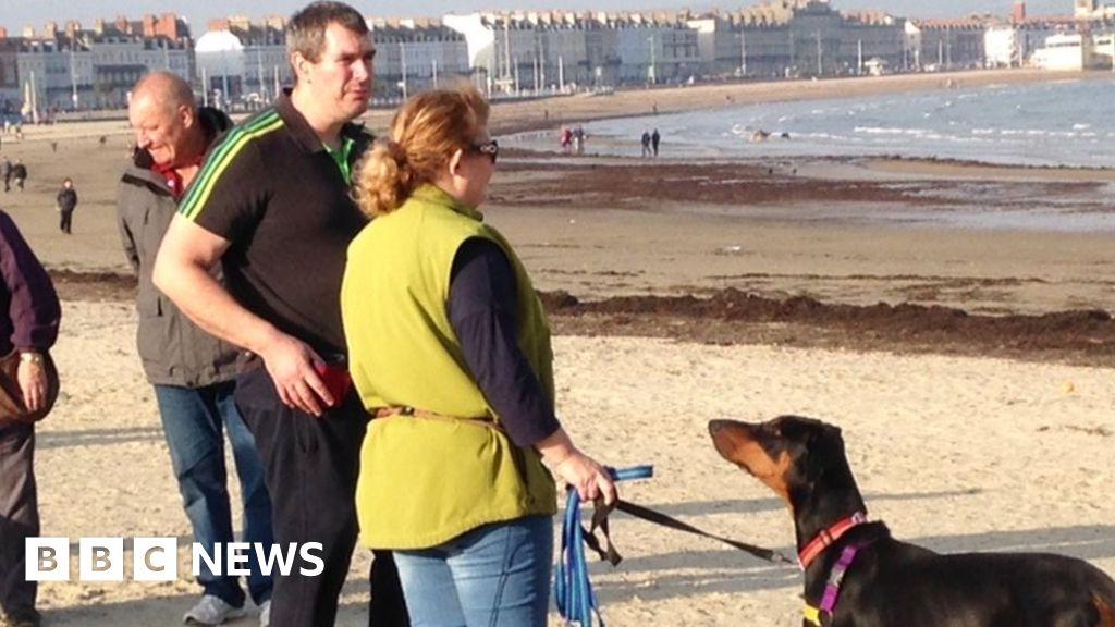 Dog Ban On Weymouth Beach