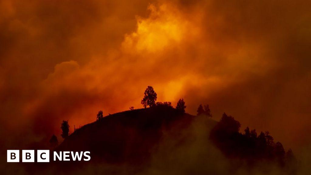 Climate change:  Bleak  outlook as carbon emissions gap grows