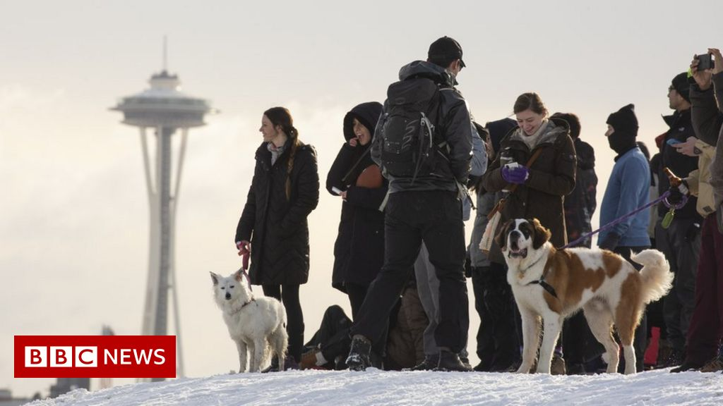 In pictures: Heavy snow hits Seattle