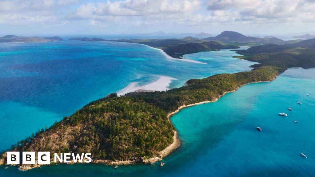 Queensland shark attack: Two British men injured at tourist spot - BBC News