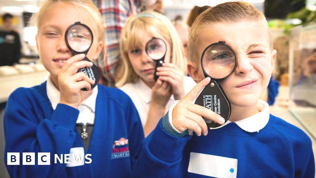 Quiz: Test your knowledge of evolution - BBC News