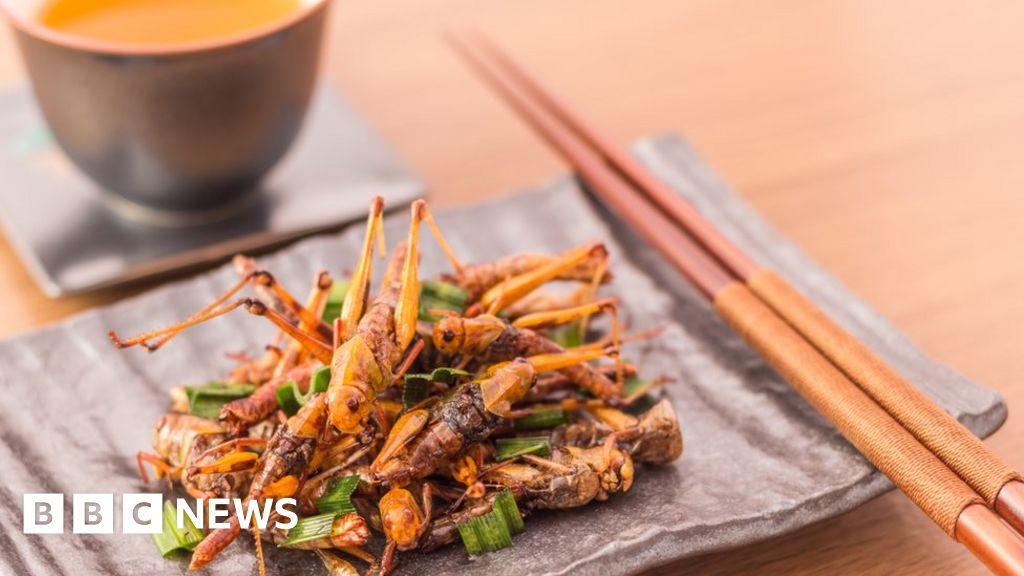 'How crickets have hit the high street'