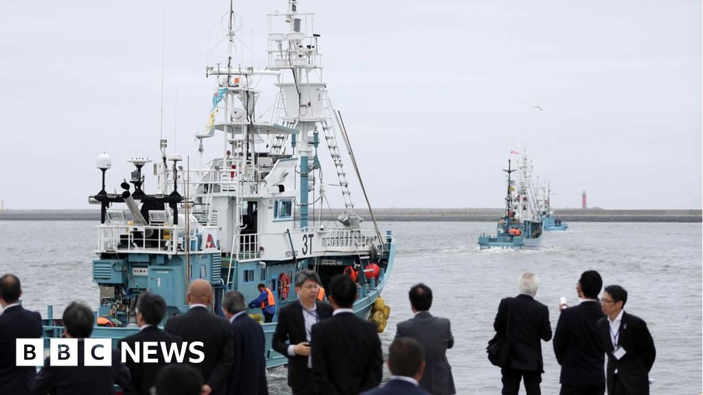 Japanese whalers set sail for commercial hunting