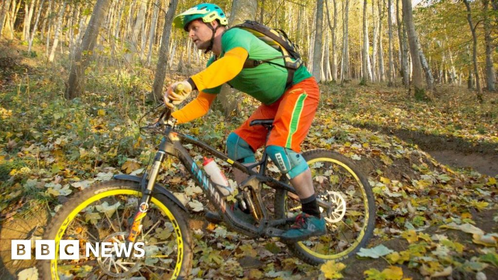 Tweed Valley forest 'zones' mapped out to tackle safety fears thumbnail