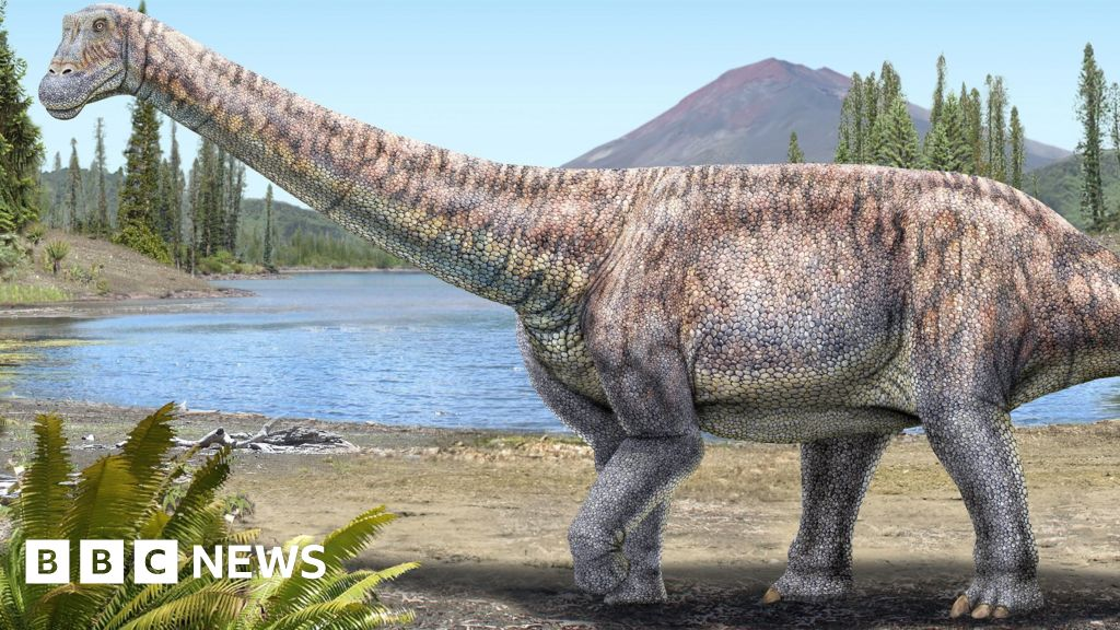New species of dinosaur unearthed in Chile's Atacama desert