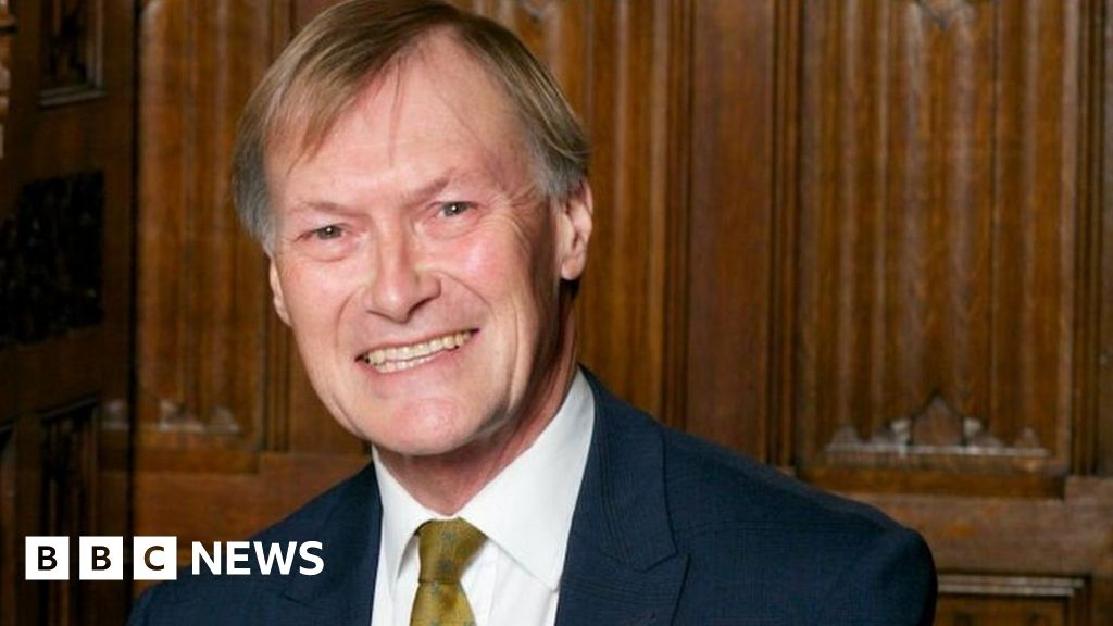Sir David Amess: The lesser-known concerns of the Southend West MP