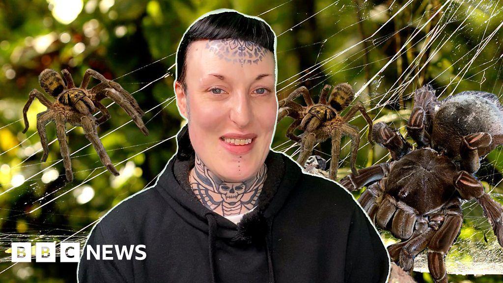 Tarantula YouTube videos help woman beat fear of spiders thumbnail