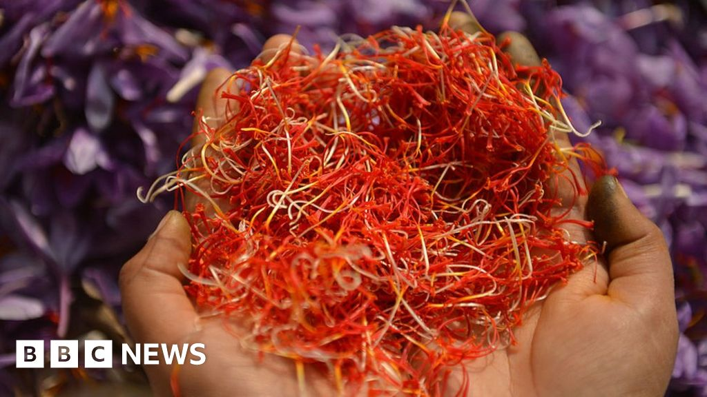 The Problem For The World S Most Expensive Spice Bbc News