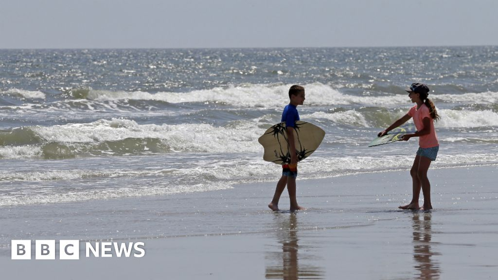 Seventh Shark Attack In Three Weeks Reported In North Carolina Bbc News