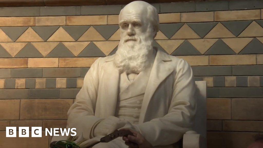 'Breathing new life' into Darwin