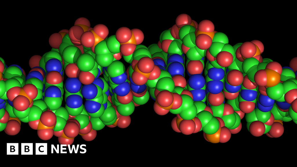 The company decoding African DNA to help fight diseases