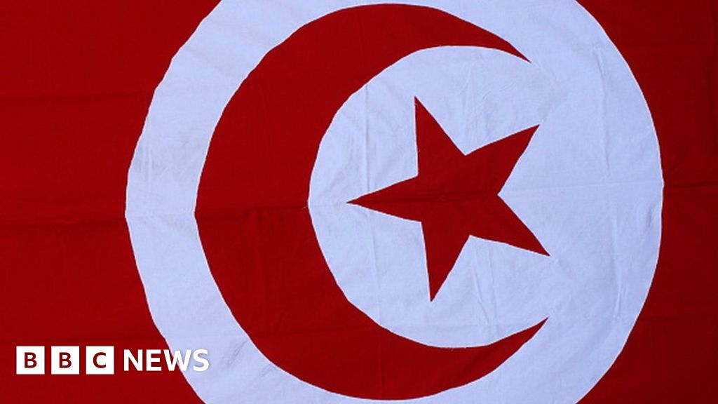 Tunisia minister resigns over baby deaths
