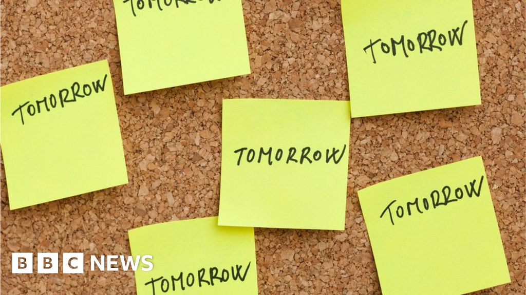 Procrastination 'is down to how mind works'