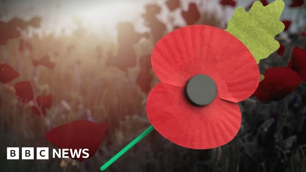 Remembrance Day Why Some People Choose Not To Wear Poppies Bbc News