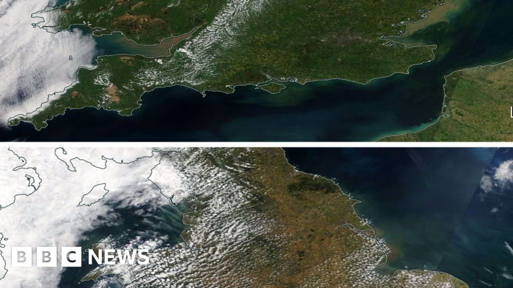 The Dramatic Effect Of The Uk Heatwave Bbc News