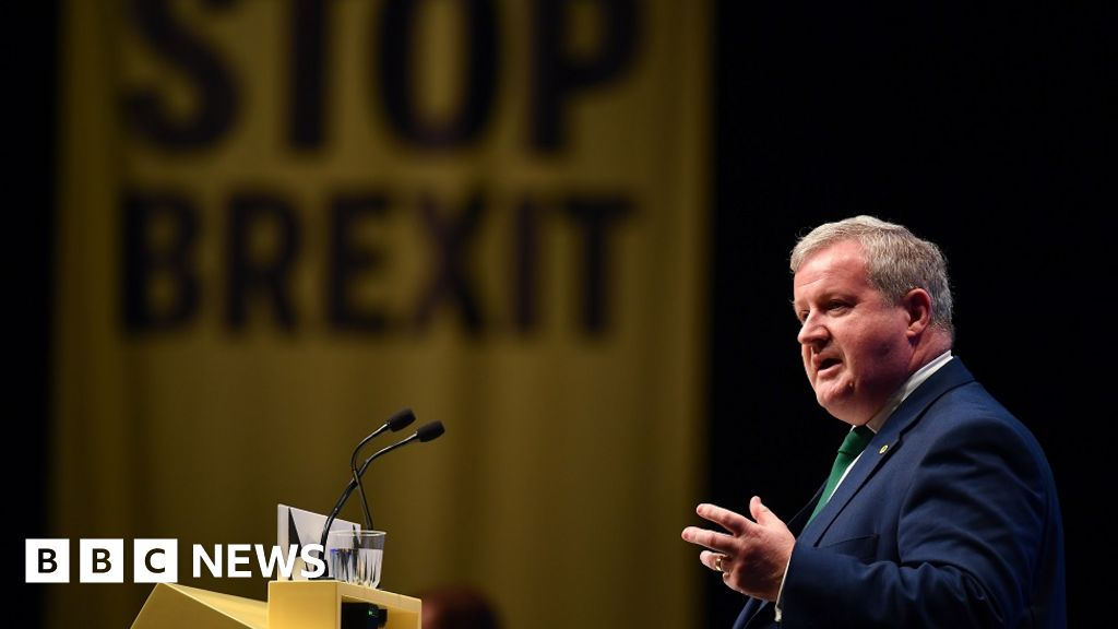 SNP calls for Brexit extension and elections