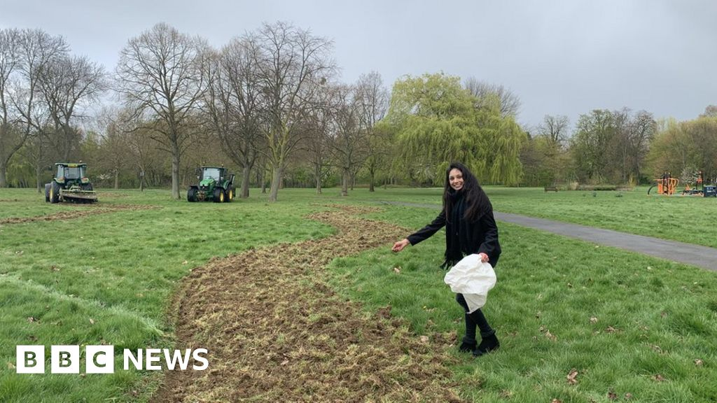 'Bee corridor' planted in London to boost insect numbers - BBC News
