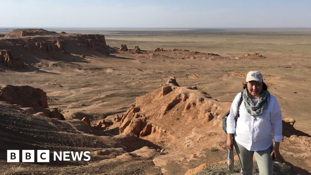 Dinosaurs: Restoring Mongolia's fossil heritage